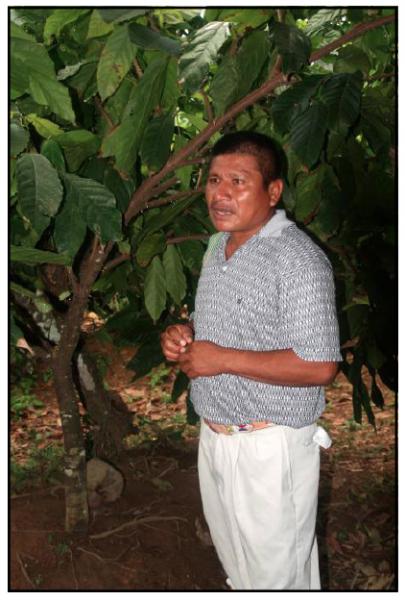 Miguel Choco, organic cacao farmer in Toledo, Belize
